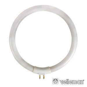 Lâmpada Circular T4 12W 230V P/ Vtlamp10 VELLEMAN - (LAMP12/10)