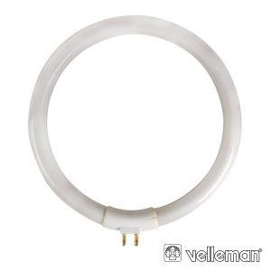 Lâmpada Circular T4 11W 230V P/ Vtlamp8 VELLEMAN - (LAMP22/8)