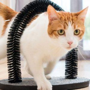 Raspador P/ Gatos E Arco Massajador C/ Cerdas Nylon - (INVG103)